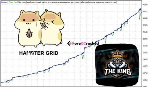 Hamster Grid/The King forex EA – $50