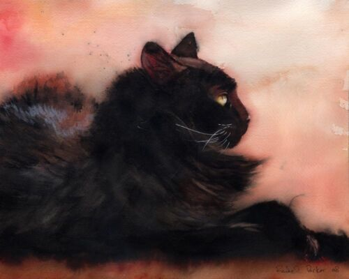 Giclee PRINT Black Long Hair Cat Art Painting Sadie Sunbathing 8x10 inches