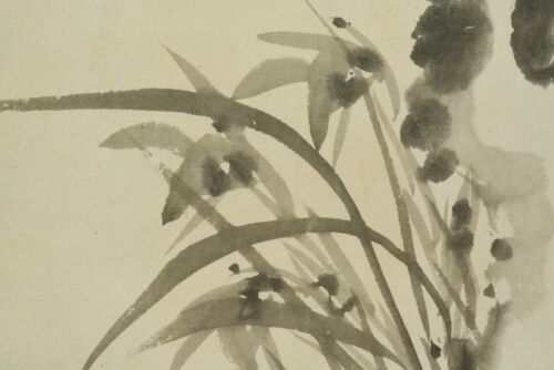 Hanging Scroll Japanese Painting Orchid Japan Asian Lotus Picture ink a862