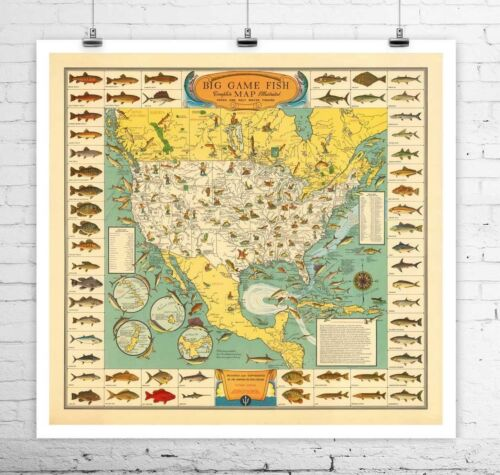 Big Game Fish 1936 Vintage Fishing Map Rolled Canvas Giclee Print 24x24 in.