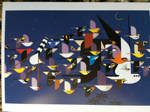 CHARLEY CHARLES HARPER Mystery of the Missing Migrants Art print New Bird Owl
