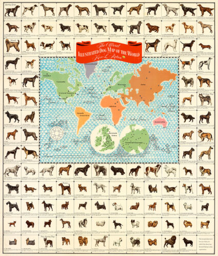 The Official Illustrated Dog Map of the World 75cm x 63.7cm Quality Art Print
