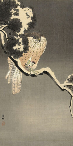 Hawk with Mouse by Ohara Koson Japanese Woodblock