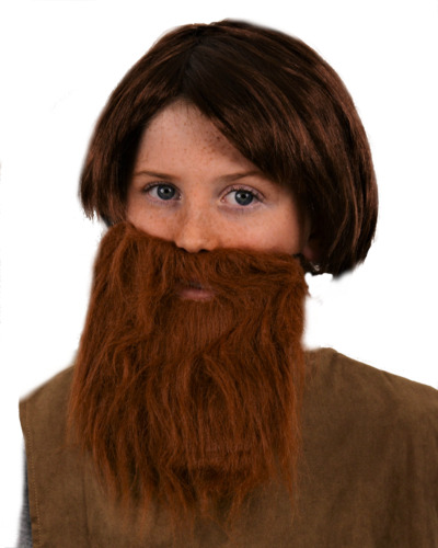 CHILDREN'S BROWN SHORT FANCY DRESS WIG & BROWN BEARD. UK NEXT DAY DISPATCH