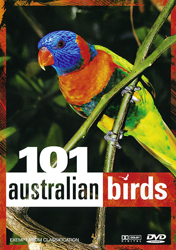 101 AUSTRALIAN BIRDS - AUSTRALIAN GEOGRAPHIC DOCUMENTARY DVD (NEW & SEALED)