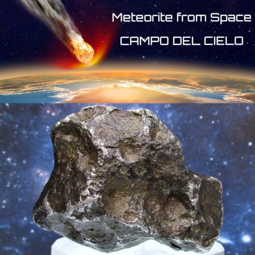 Large 384g * Campo Del Cielo Meteorite * Argentina Museum Grade AAA Quality 🌠🌌