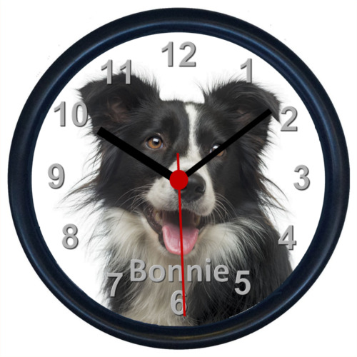 Personalised BORDER COLLIE Wall Clock