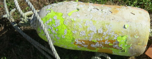 CRAB POT FLOAT 1 Beachcombed Green BARNACLES Faded Buoy Ocean Tiki Pacific NW