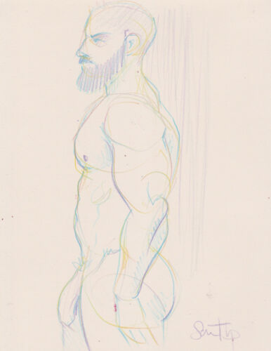 Male Nude Study- Pencil Drawing Fine Art- Signed by Artist