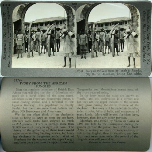 Keystone Stereoview IVORY MARKET of Mombasa, B. E. AFRICA From 600/1200 Card Set