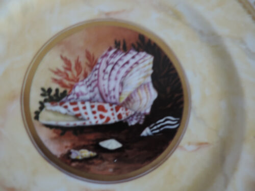 Big Porcelain Plate Worcester Flight Barr Style Sea Shells Faux Marble Minoprio