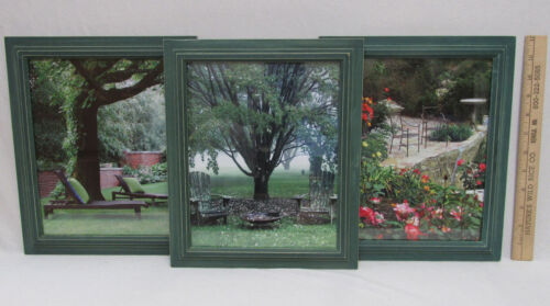 Lot of 3 Garden Patio Tree Pictures Photos In Green Frames Wall Decor