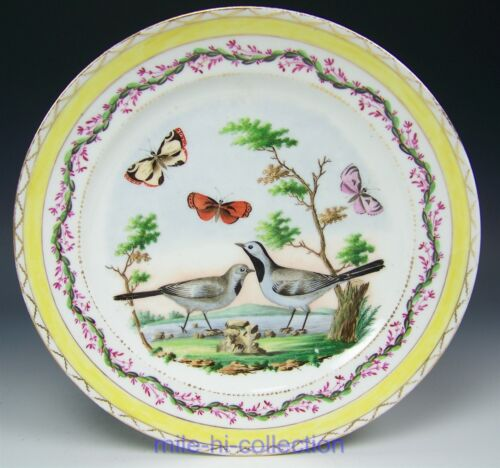 1890 SEVRES FRANCE HAND PAINTED BIRDS BUTTERFLIES CABINET PLATE