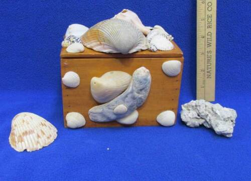 Handcrafted Wood Box w/ Sea Shells Brass Hinge Tinket Treasure Box Vintage