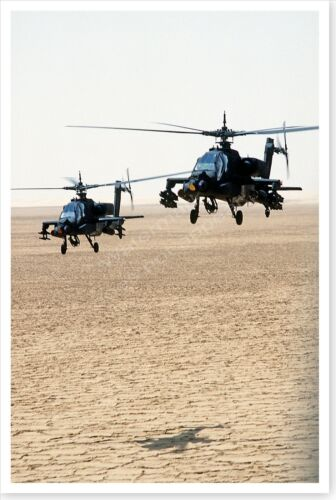Armed AH-64A Apache Helicopters Operation Desert Shield 8 x 12 PhotoReproductions - 156449