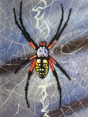 Watercolor Painting Spider Web Spiderweb Insect Nature Insect ACEO Art