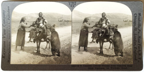 Keystone Stereoview Circus Troupe & Dancing Bear, Turkey of 30's T400 Set #T212