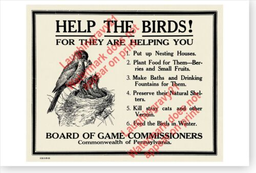 Help The Birds For They Are Helping You 1925 Pennsylvania Game Commission Poster