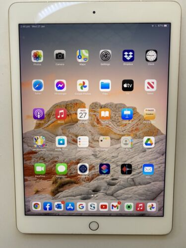 iPad Pro 9.7 inch Wi-Fi and Cellular 256GB Gold Plus Case and 2m Cable