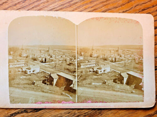 Stereoview Watkins NY Overview of Town R.D. Grum Artist 1880-90's Schuyler Co