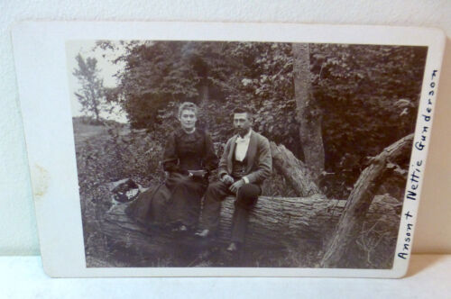 Antique cabinet photo married couple on tree log c.1900; Rockford, Illinois, old
