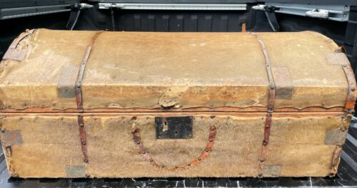 1841 Antique TRUNK STAGECOACH Wood Chest Hide FUR Cover NEW YORK NEWSPAPER LINED