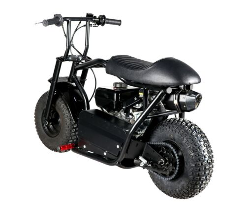 New arrive fatboy 7.5hp 225cc with torque converter dirt bike for kids adult