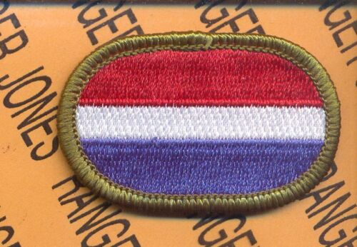 Co E 109th MI Bn LRS Airborne Military Intelligence Ranger para oval patch #2Other Militaria - 135