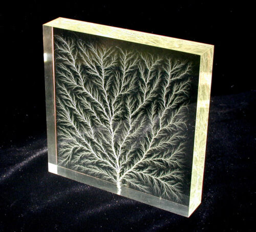 "4"" x 4"" x 3/4"" Captured Lightning Edge Lichtenberg Figure Beam Tree Sculpture"