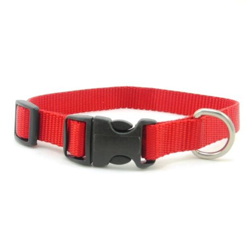SCOTT Adjustable Nylon Dog Collar, Various Sizes and Colors