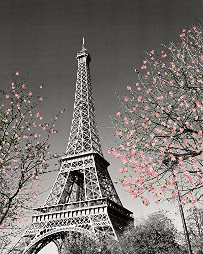 Paris Eiffel Tower Blossom Decorative Photography Travel City Poster Print 16x20