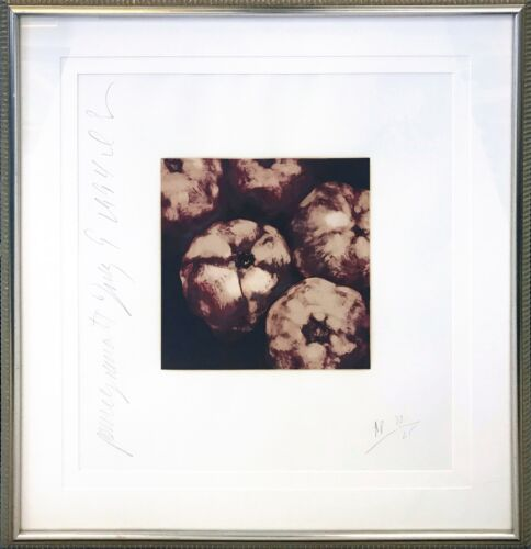 "DONALD SULTAN ""POMEGRANATES"" 1994 