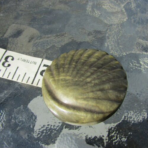 Antique Realistic Button Extra Large Celluloid Sea Shell Steel Shank Back
