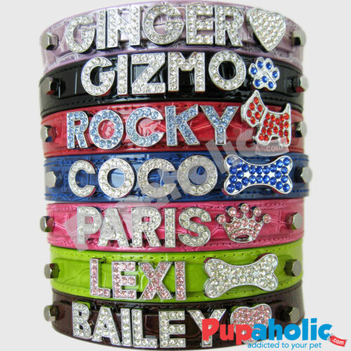 Croc Dog Cat Pet Personalized Collar - XS, S, M, L, XL <br/> FREE NAME up to 6 LETTERS + CHARM  SHIPS FROM USA