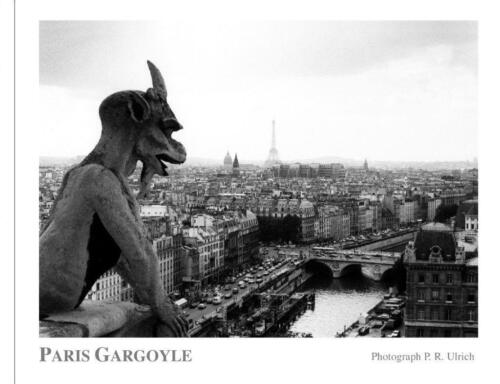 "Poster ""Paris Gargoyle"" Size 20 X16 Photographed from Notre Dame, Eiffel Tower"