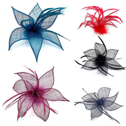 Beak Clip Mesh Feather Fascinator Ladies Day Royal Ascot Fascinator Hair Piece 9
