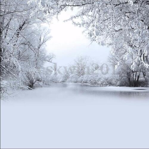 8x8FT Christmas Winter Ice Snow Vinyl Background Studio Photography Backdrops