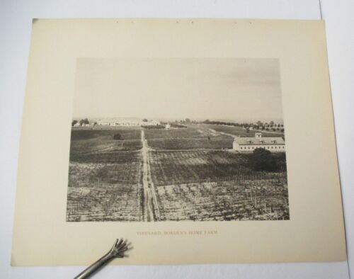 VINEYARD, BORDEN'S HOME FARM from 1893 Art Work of Ulster County NY