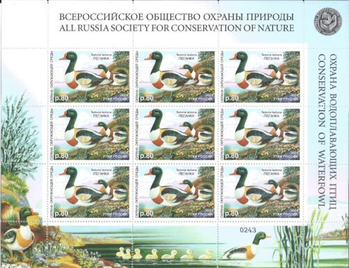 RUSSIA SHEET SET (8) ** CONSERVATION OF WATERFOWL HUNTING DUCKS LOOK 8 SCAN
