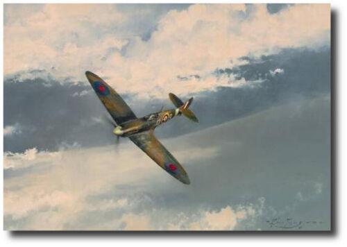 After the Storm by Robert Taylor -WWII - Spitfire - Signed - Aviation Art Prints