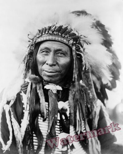 Historical Photograph American Sioux Indian Portrait of Black Thunder 1908  8x10