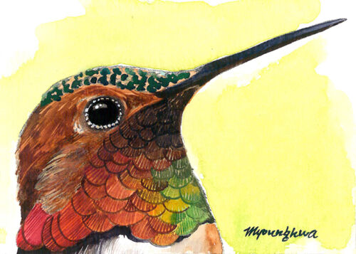 ACEO Limited Edition - Close up hummingbird, Gift for bird lovers, Home deco