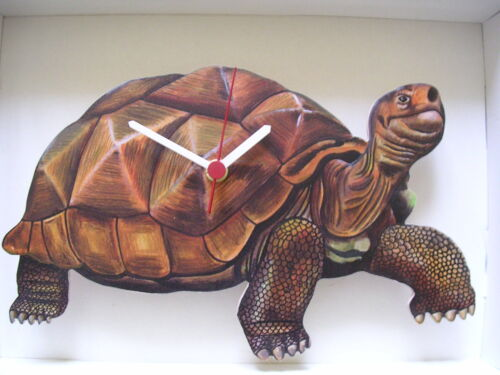 TORTOISE WALL CLOCK. NEW AND BOXED.