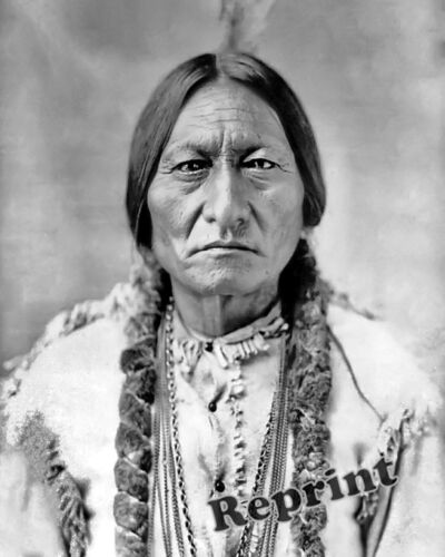 Photograph of a 1885 Portrait of American Indian Sitting Bull   8x10