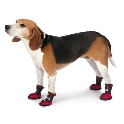 KONG High Top Sports Boots For Dogs In 3 Sizes ~ Stylish Paw Protection