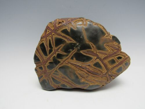 A Chinese Scholar's Stone - rare type of Structure Rock