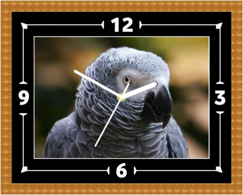 African Grey (02) Parrot Clock Present Christmas Birthday (Can Be Personalised)