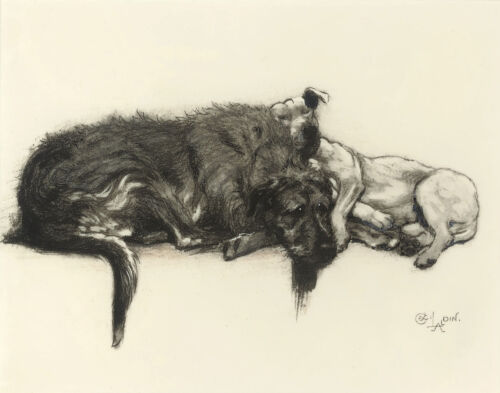 Aldin Cecil Micky And Cracker Resting Print 11 x 14  #5332