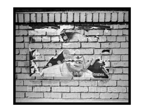 Neal White photo, Torn Ronald Reagan poster, 1980s