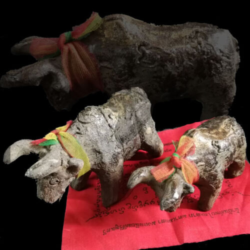 Thai Amulet BLACK Wild Ox Arrow Magic Doll HAUNTED EVIL VOODOO For Protect Life